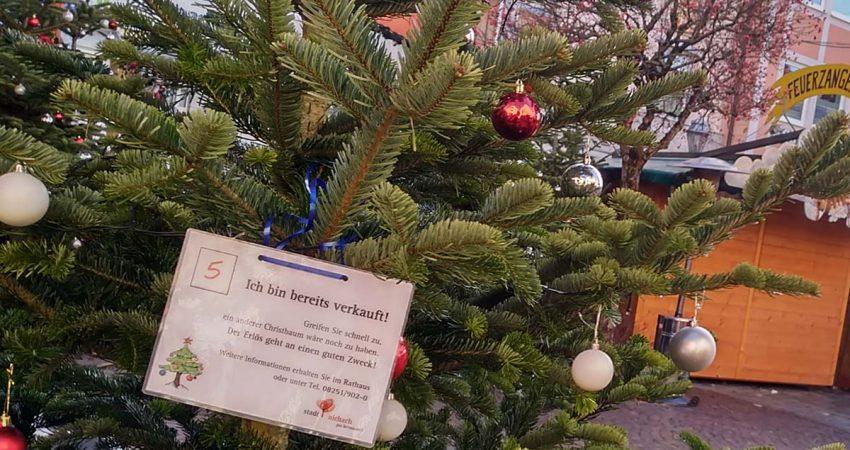 Weihnachtsbaum vom Aichacher Weihnachtsmarkt